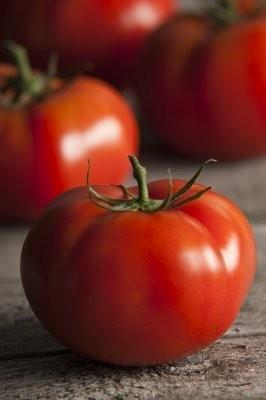 Seminte Tomate Rila F1 (2500 seminte) crestere nedeterminata rosii profesionale de la Geosem Bulgaria