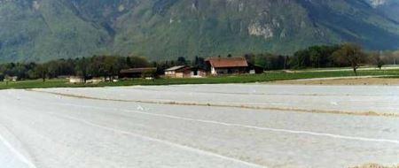 Agril 23 gr / mp 12 m*100m- 1200mp, din plastic de calitate superioara, Thrace Nonwovens & Geosynthetics