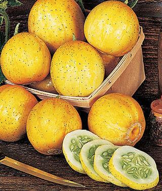 Castravetii Lemon-Apple seminte de catraveti exotici, aroma dulce-picanta, niciodata amar, Florian
