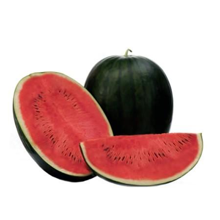 Kandemir F1 - 500 sem - Seminte de pepene verde cu pulpa de culoare rosu intens crocanta de la Yuksel