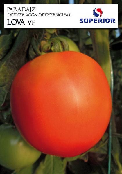 Lova – 10 gr – Seminte de Tomate Timpurii de Camp de la Superior Seeds Serbia