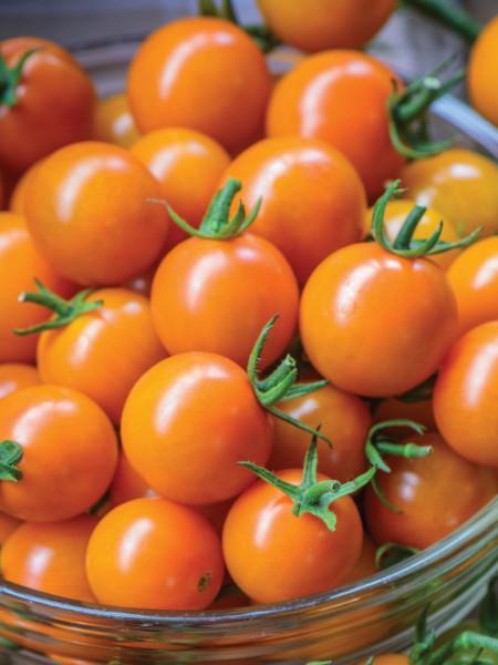 Rosii Orange Cherry (90 seminte), tomate cherry portocalii, soi timpuriu, crestere nedeterminata, Agrosem