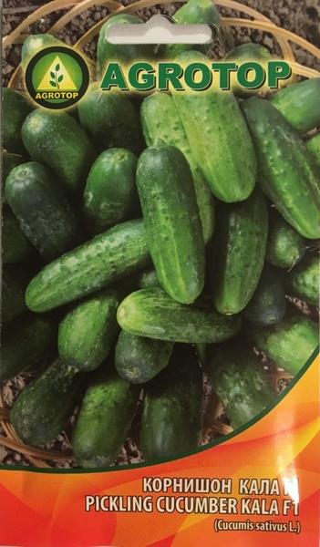 Seminte castraveti cornison Kala F1 (5 gr), extratimpurii, productivitate foarte mare, pentru sere si solarii, Agrotop Bulgaria