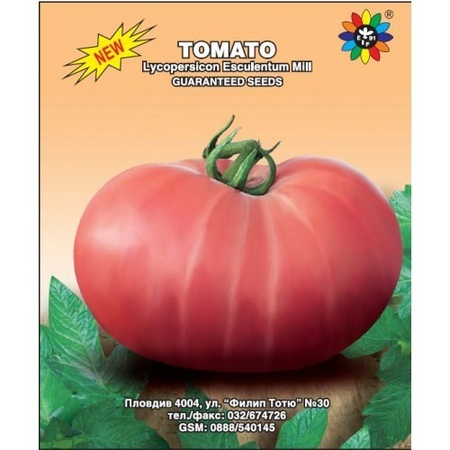 Tomate Roz-Mov (0.5 gr) Seminte Tomate Mari de Culoare Roz-Mov Semitimpurii, Biosem