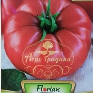 Zazera Gigant ( tip Homestead) – 0.5 gr – Seminte Tomate Tip Gigant Rosu Homestead - Zazera de la Florian