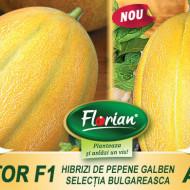Atila F1 (120 seminte) pepene galben bulgaresc feliat, semi-timpuriu, pulpa crocanta, fruct 3 - 4 kg, Florian