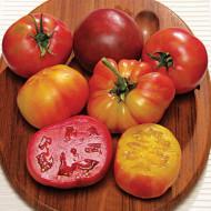 BIG RAINBOW (70 seminte) rosii galbene gigant pana la 1 kg, PARK SEEDS SUA