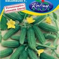 Castraveti Kolumbusz F1 (2 g), seminte de castraveti hibrid timpuriu foarte productiv, Kertimag