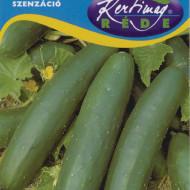 Castraveti Sensation (2 g), seminte de castraveti soi tardiv semilung pentru salate, Kertimag
