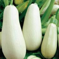 Dovlecel alb (4 g), seminte de dovlecel alb fara vrej, Kertimag