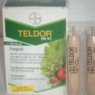 Fungicid actiune de contact si local sistemica Teldor 500 SC (5 litri ), Bayer CropScience
