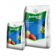 Fungicid de contact Antracol 70 WP (1 KG ), Bayer CropScience