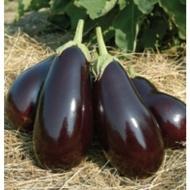 Galine F1 - 5 grame - Seminte de vinete cu fruct de culoare violet stralucitor lung de 15 cm si cantaresc aproximativ 500 de grame de la Clause