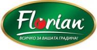 Gizda (40 seminte) castraveti lungi, gust deosebit, soi semi-timpuriu, Florian