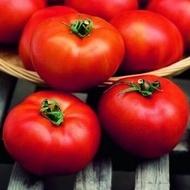Hector F1 - 1000 sem - Seminte de rosii determinate ce produc fructe mari cu o capacitate de pastrare dupa recoltare medie de un gust excelent de la Clause