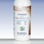 Ingrasamant Boroxyl (1 L), previne craparea fructelor, Codiagro