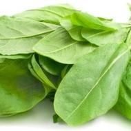 Macris - Seminte de Macris Planta Aromatica si Medicinala de la Florian