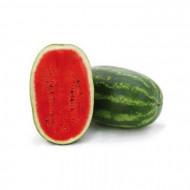 Paladin F1 - 500 sem - Seminte de pepene verde cu pulpa excelenta si aroma puternica continut mare de zahar ceea ce il face de neintrecut la gust de la Sakata