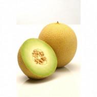 Rachel seminte de pepene galben tip Ananas (100 seminte), Hazera