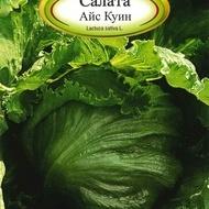 Salata ICE QUEEN - 3 gr - Seminte de Salata Soi de iarna timpuriu Florian Bulgaria