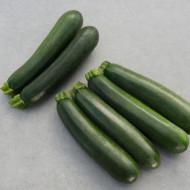 Seminte zucchini Modena F1 (100 seminte), Bejo Zaden