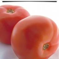 Super Beef F1 - 50 sem -Seminte Rosii Nedeterminate Fructe Mari Carnoase de la Superior Serbia