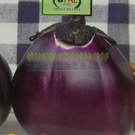 Vinete VIOLET DE FLORENS - 3 gr - Seminte de Vinete Soi semitimpuriu de la Opal
