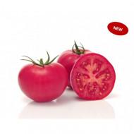 Pink Wand F1 (500 seminte), tomate roz extratimpurii nedeterminate partenocarpice, Sakata