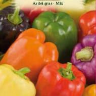 Ardei gras MIX (60 seminte), soiuri productive, rosu, galben si mov, Agrosem
