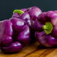 Ardei gras Oda (0.4 gr) Seminte de Ardei Gras violet Soi timpuriu, Agrosem