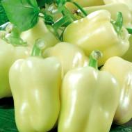 Ardei gras Zorza (70 seminte) ardei gras, fructe mari verde deschis, Florian