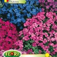 Aubrieta Mix (300 seminte) Flori Aubrieta Mix de la Florian
