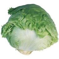 Aviram - 1000 sem - Seminte de salata tip Eisberg 300-700 gr recomandata pentru vara de la Hazera