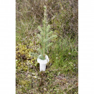 Guler protectie tulpina HyloPro - PP