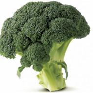 IZK Iskra(150 seminte) de broccoli soi nou tardiv, productie foarte buna, IZK Bulgaria