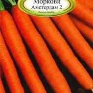 Morcovi AMSTERDAM 2 - 10 gr - Seminte de Morcovi Florian Bulgaria Soi extratimpuriu
