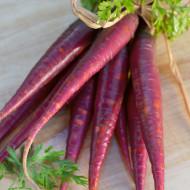 Morcovi Violet Cosmic Purple (500 seminte) de morcovi violet gust deosebit, textura crocanta, Florian