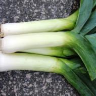 Praz Tomis (1,5 g), seminte de praz cu frunze verde inchis si tulpina alba, Agrosel