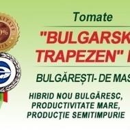Rosii Bulgarski Trapezen F1 - 250 sem - Seminte de rosii nedeterminate timpurii Florian Bulgaria