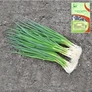 Savel (50.000 seminte) ceapa verde de legatura, de vara, de la Hazera