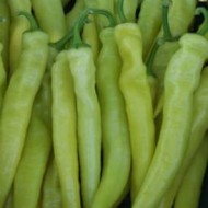 Seminte ardei iute Daras F1 (500 seminte), fructe ascutite, De Ruiter Seeds