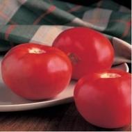 Seminte rosii Bob Cat F1 (1000 seminte), timpurii cu crestere determinata, Syngenta