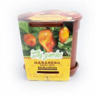Set de cultivare - Ardei iute Mexican Habanero Orange, Colectia City Garden