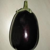 Vinete Tudela F1 - 10 gr seminte de Vinete leaga bine la temperaturi joase tip Black Beauty