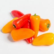 Ardei snack orange Adelin ( 80 seminte), semitimpuriu, crestere nedeterminata, Agrosel
