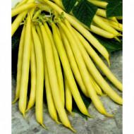 Bergold (1 kg) Seminte Fasole Pitica Galbena Cilindrica Soi Timpuriu, Agrosem