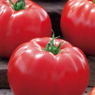 Big Beef F1 (100 seminte) de tomate timpurii, Seminis