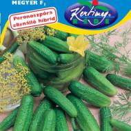 Castraveti Megyer F1 (2 g), seminte de castraveti hibrid foarte timpuriu cu crestere viguroasa, Kertimag