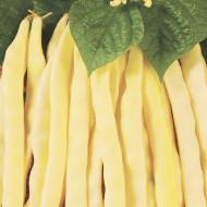 Eureka (25 kg) seminte de fasole pitica cu bob alb, Agrosem