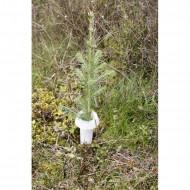 Guler protectie tulpina HyloPro - BioWit